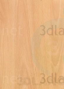 Texture Ellmau beech free download - image