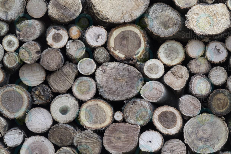 Descarga gratuita de textura Cpil árbol, redondo culo - imagen