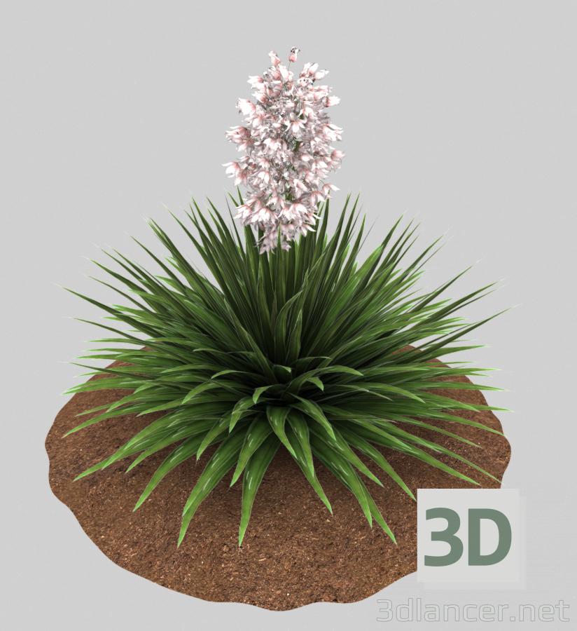 3d Yukka nittsataya model buy - render