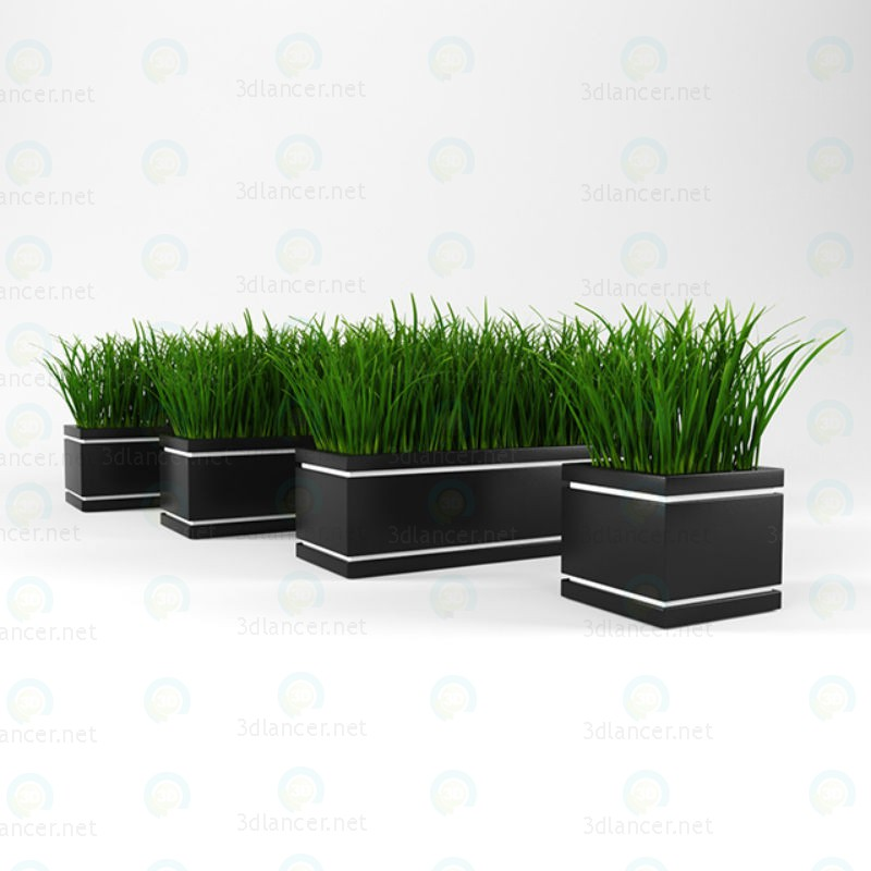 3d model Grass for decoration - preview