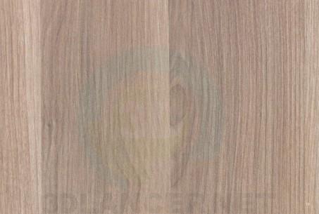 Texture Icelandic birch free download - image