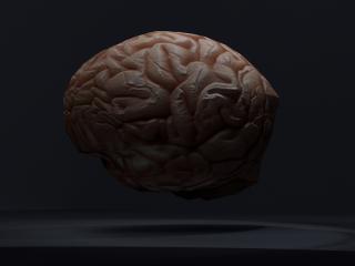 Low-poly Brain
