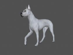 FDGD-001 Animasyon köpeği