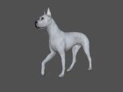 FDGD-001 Animation dog