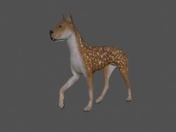 FDGD-002 Köpek Animasyonu