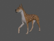 FDGD-002 Dog Animation