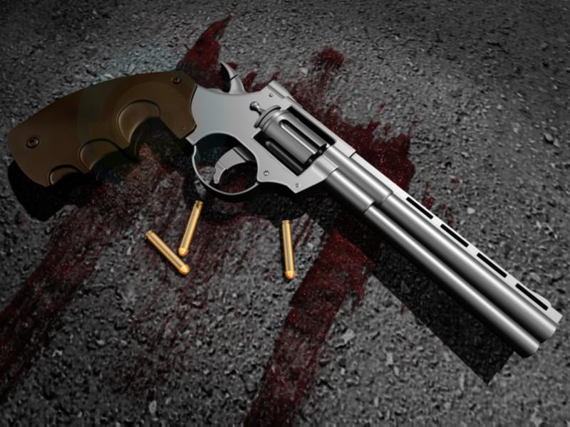 3d model Revolver - preview