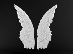 Wall decoration Wings