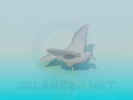 3d modeling Pigeon model free download