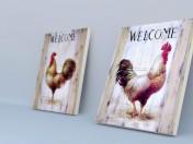 carteles con pollas