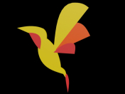Polygonal hummingbird