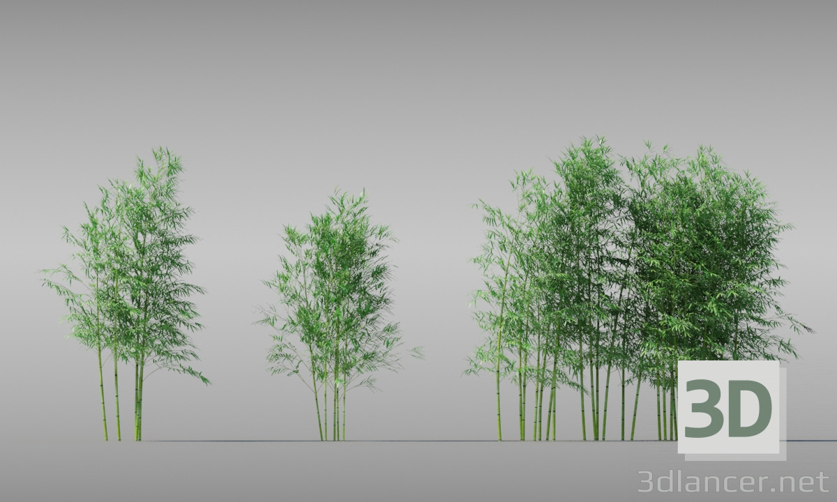 3d model BAMBOO TREE - preview