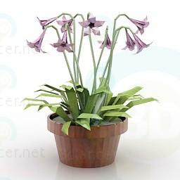 modelo 3D flor - escuchar