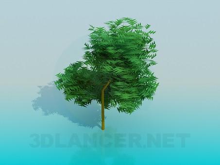 3d моделювання Дерево модель завантажити безкоштовно