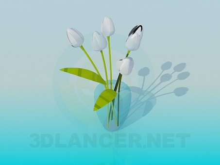 3d model Vase with white tulips - preview