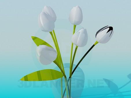 3d модель Ваза с белыми тюльпанами – превью