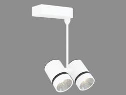 छत रोशनी कॉटस 2