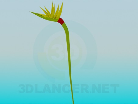 modelo 3D Yema floral - escuchar